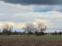 Blick auf umliegende Felder